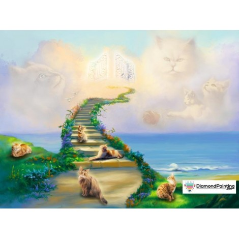 Ships From USA -  All Cats Go To Heaven 50x40cm
