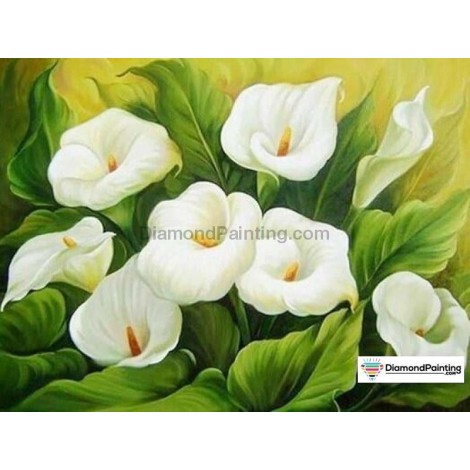 Ships From USA - White Flowers 40x60cm