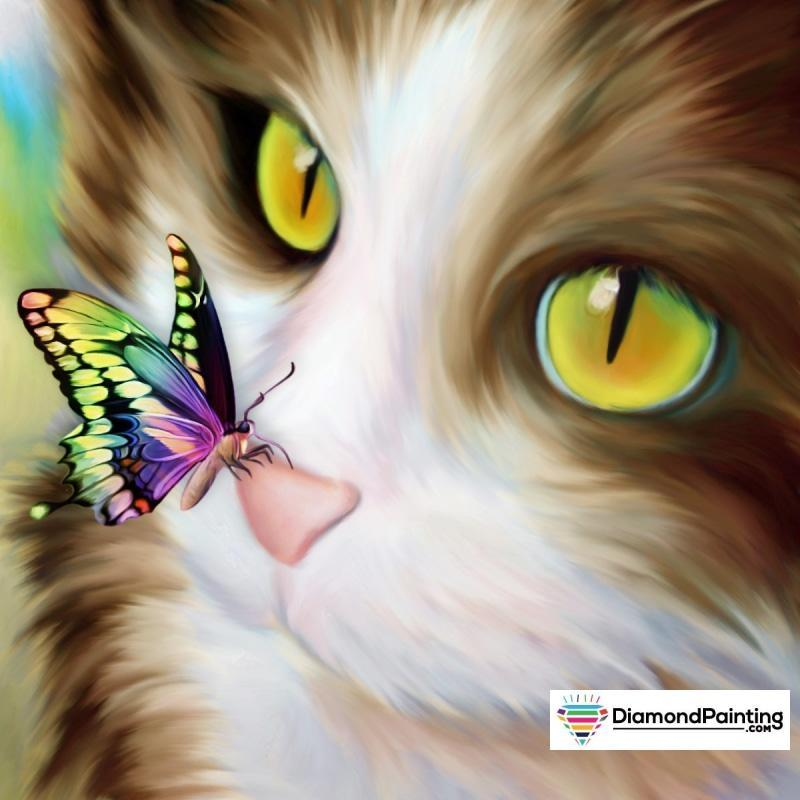 Kitty With Butterfly...