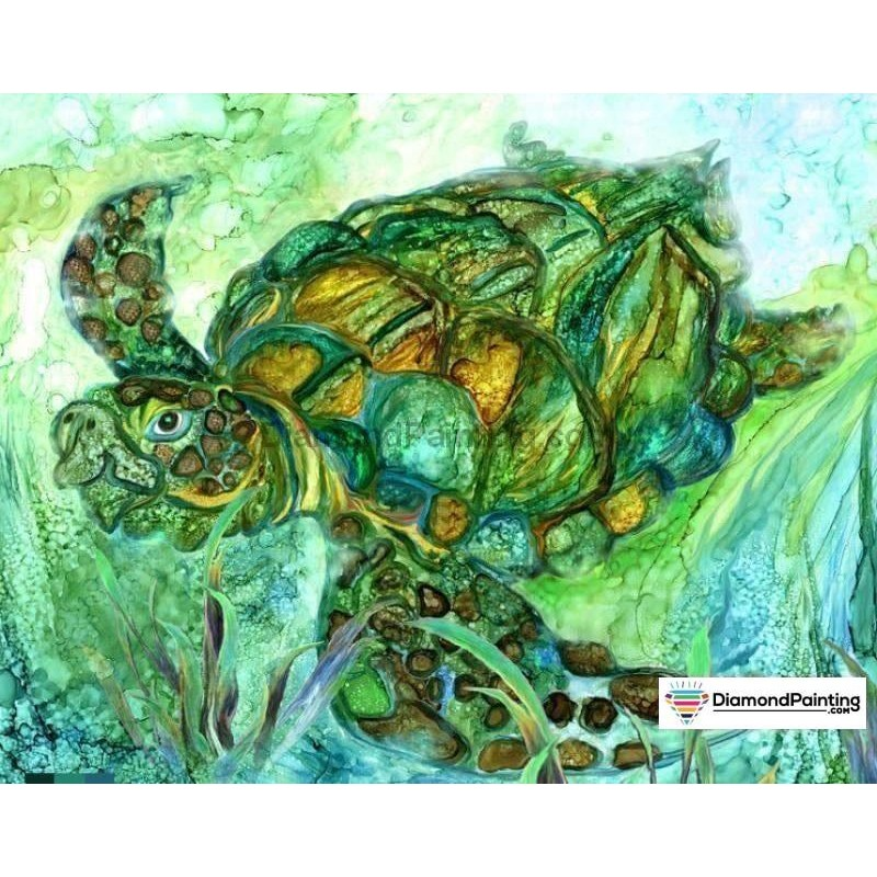 Abstract Tortoise DI...