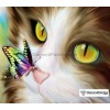 Cat and Butterfly Diamond Painting Kit