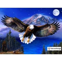 Eagle Moon Diamond Painti...