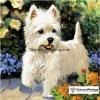 The Cute Animal Collection - Diamond Painting Kit